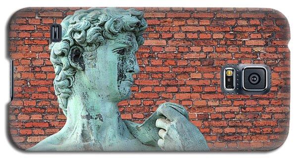 Michelangelos David Galaxy S5 Case