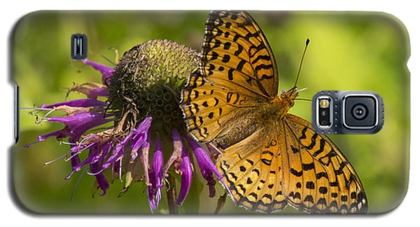 Michigan Fritillary Galaxy S5 Case