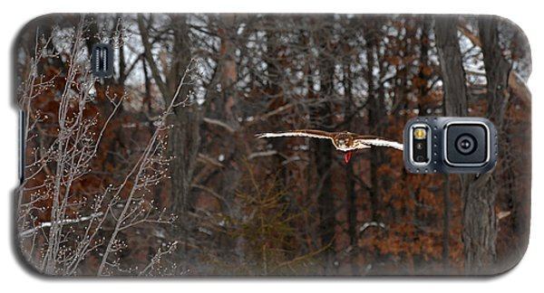 Michigan Redtail Hawk Galaxy S5 Case