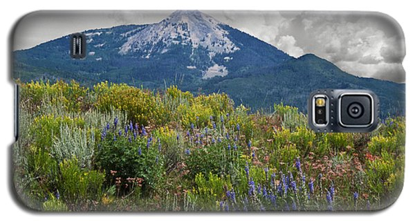 Mid Summer Morning Galaxy S5 Case by Daniel Hebard