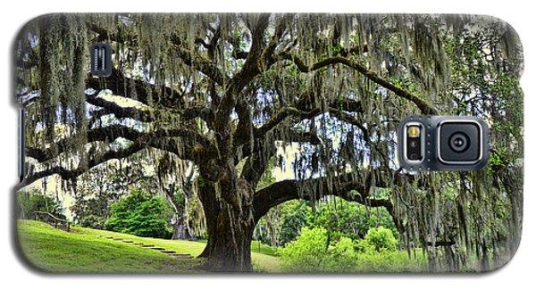 Middleton Place Oak  Galaxy S5 Case by Allen Beatty