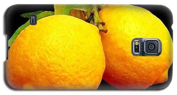 Midnight Lemons Galaxy S5 Case