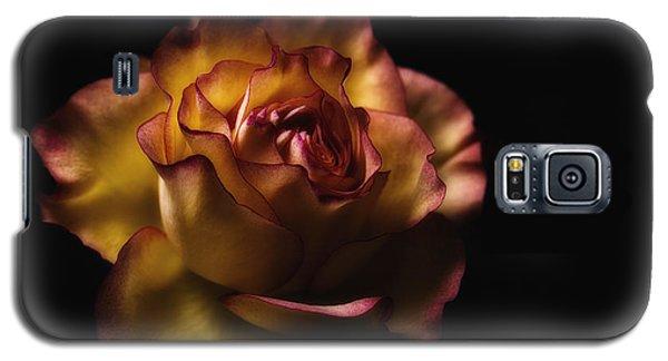 Midnight Rose Galaxy S5 Case