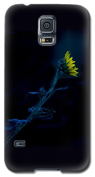 Galaxy S5 Case featuring the photograph Midnight Sunflower by Darryl Dalton