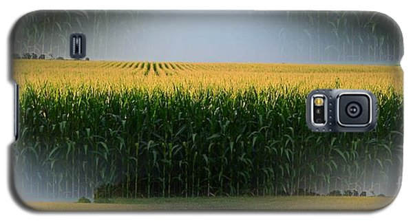 Midwest Gold Galaxy S5 Case by Luther Fine Art
