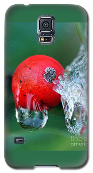 Midwinter Meltdown Galaxy S5 Case
