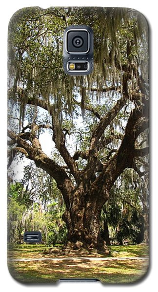 Galaxy S5 Case featuring the photograph Mighty Oak by Beth Vincent