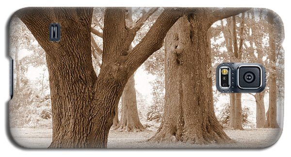 Galaxy S5 Case featuring the photograph Mighty Oaks by Jim Whalen