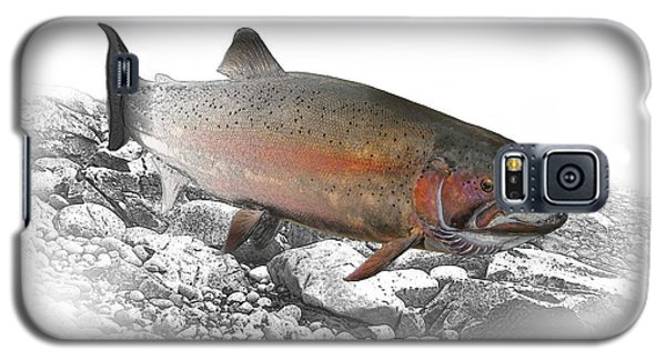 Migrating Steelhead Rainbow Trout Galaxy S5 Case by Randall Nyhof