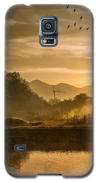 Migratory Birds Galaxy S5 Case