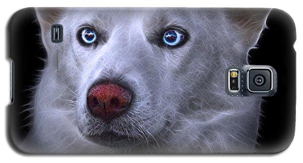 Mila - Siberian Husky - 2103 - Bb Galaxy S5 Case