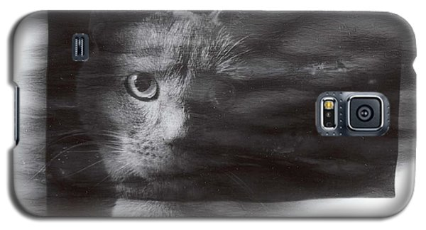 Galaxy S5 Case featuring the photograph Miles by KarinThue