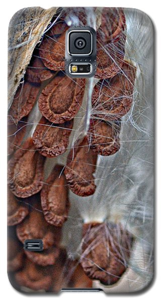 Milkweed Galaxy S5 Case by JRP Photography