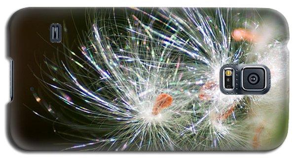 Milkweed Seed Galaxy S5 Case