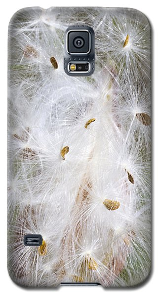 Milkweed Seeds And Fluff Galaxy S5 Case