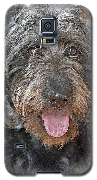 Galaxy S5 Case featuring the photograph Milo by Lisa Phillips