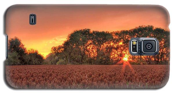Milo Galaxy S5 Case