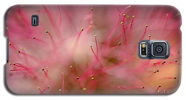 Mimosa Fireworks Galaxy S5 Case