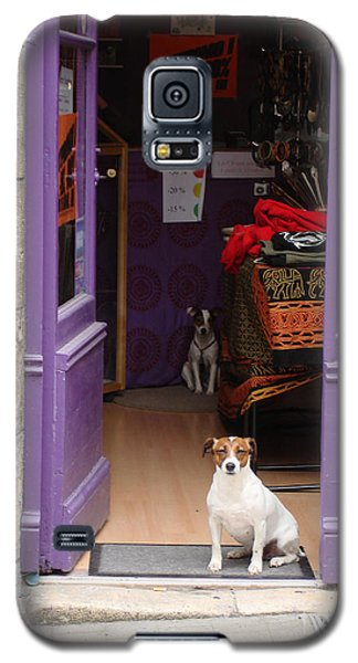 Minding The Shop. Two French Dogs In Boutique Galaxy S5 Case