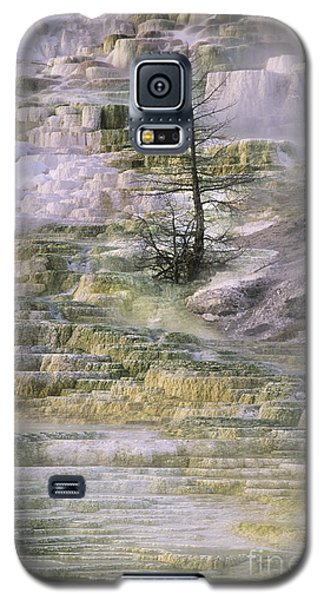 Minerva Springs Terraces Yellowstone National Park Galaxy S5 Case