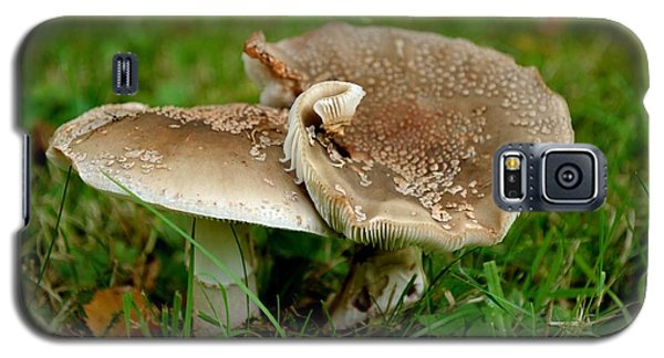 Galaxy S5 Case featuring the photograph Mingling Mushrooms by Scott Lyons