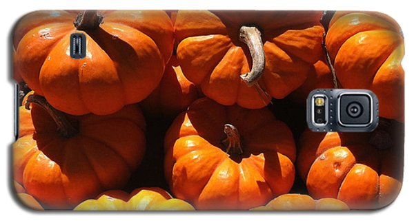 Galaxy S5 Case featuring the photograph Mini Fall Pumpkins by Denyse Duhaime