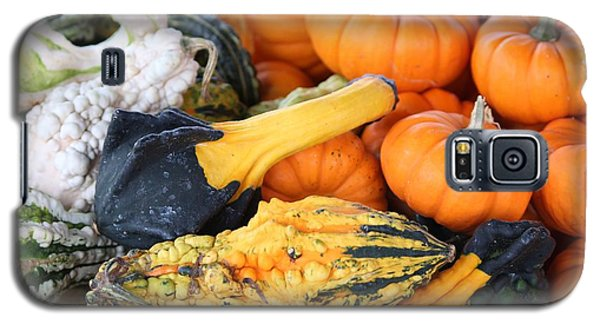 Galaxy S5 Case featuring the photograph Mini Pumpkins And Gourds by Cynthia Guinn