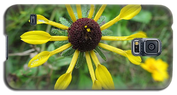 Galaxy S5 Case featuring the photograph Mini-sunflower by Tina M Wenger