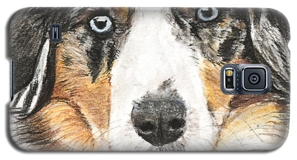 Miniature Australian Shepherd Galaxy S5 Case