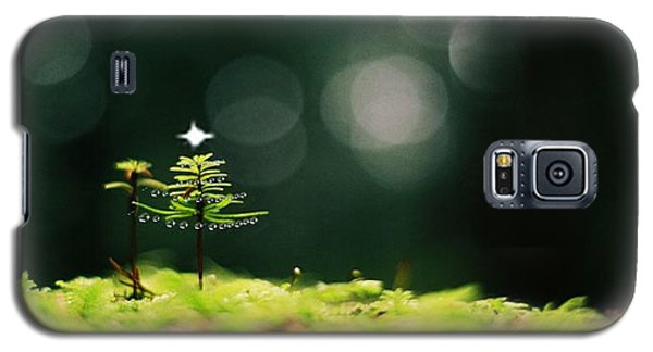 Miniature Christmas Tree Galaxy S5 Case by Cathie Douglas