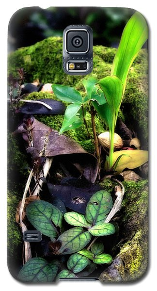 Galaxy S5 Case featuring the photograph Miniature Garden by Jim Thompson