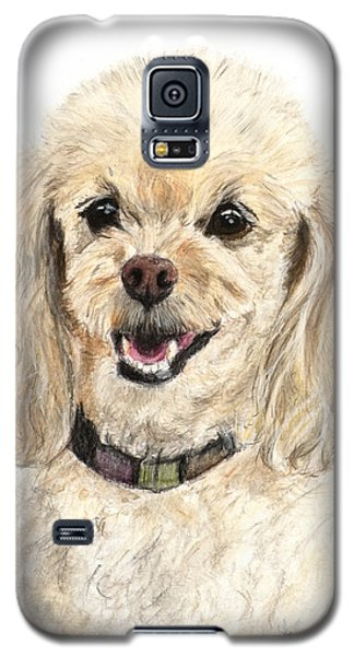 Miniature Poodle Painting Champagne Galaxy S5 Case