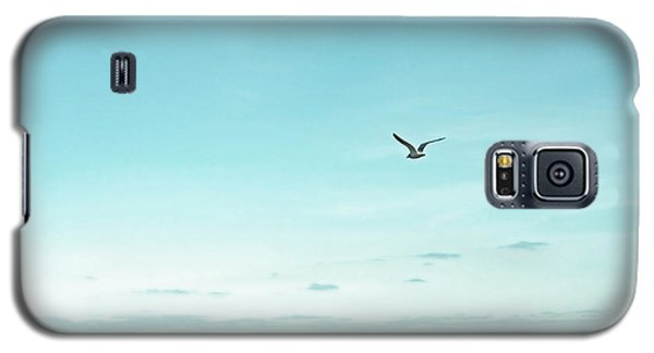 Minimalist Blue And Brown Seascape Galaxy S5 Case by Brooke T Ryan