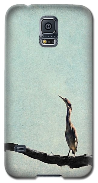 Minimalist Vintage Inspired Green Heron On Pale Blue Sky Galaxy S5 Case by Brooke T Ryan
