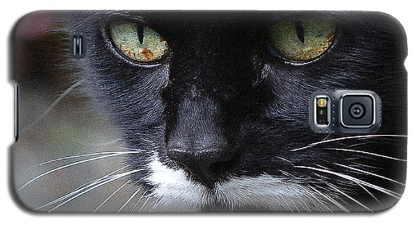 Minnie Stare 2 Galaxy S5 Case