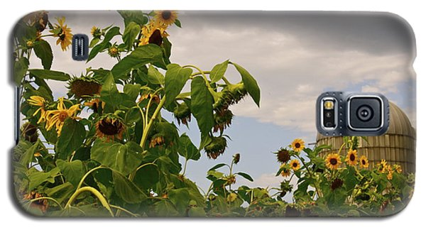 Galaxy S5 Case featuring the photograph Minot Farm by Alice Mainville