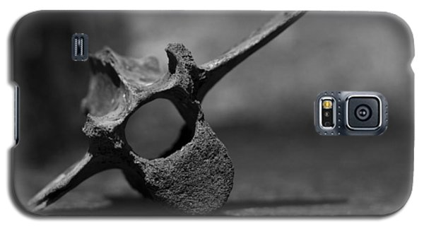 Galaxy S5 Case featuring the photograph Miocene Fossil Whale Vertebra by Rebecca Sherman