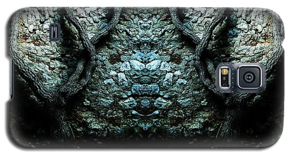 Mirror Mirror On The Wall Galaxy S5 Case by Andy Prendy
