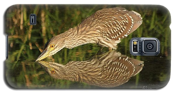 Mirror Mirror On The Wall Who Is The Fairest Heron Of All Galaxy S5 Case