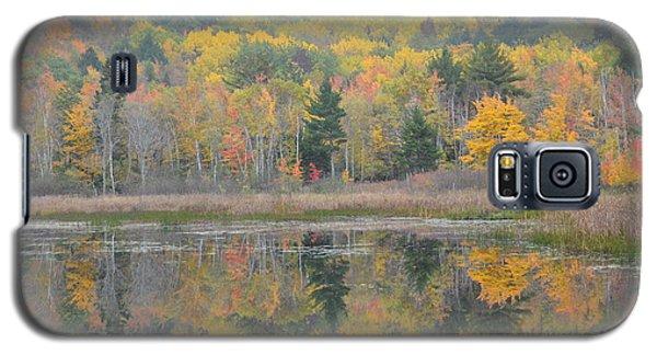 Mirrored Fall Splendor Galaxy S5 Case