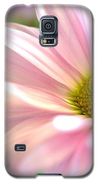 Miss Daisy Galaxy S5 Case