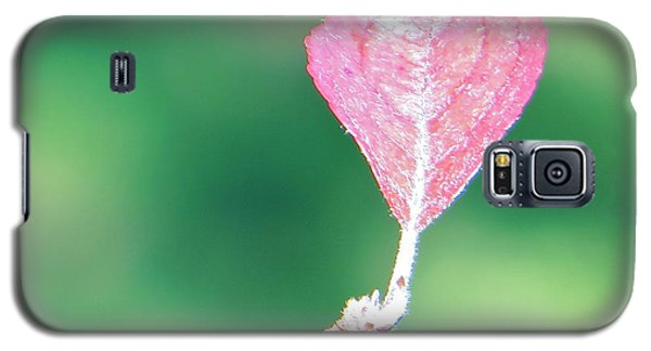 Galaxy S5 Case featuring the photograph Miss Lonely Heart by Joy Hardee
