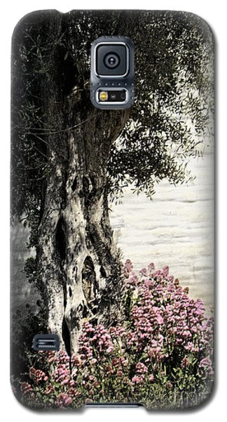 Galaxy S5 Case featuring the photograph Mission San Jose Tree Dedicated To The Ohlones by Ellen Cotton