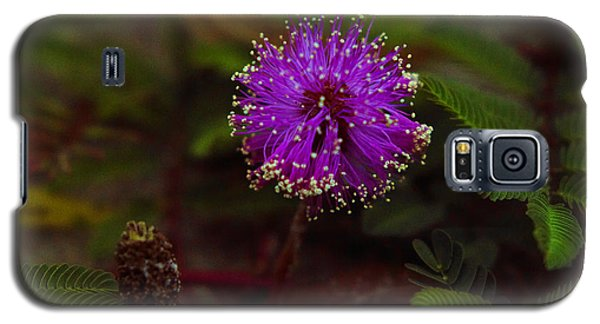 Galaxy S5 Case featuring the photograph Mississippi Flower by Silke Brubaker