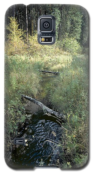 Mississippi River Headwaters Galaxy S5 Case