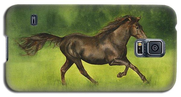 Missouri Fox Trotter Horse Galaxy S5 Case by Nan Wright