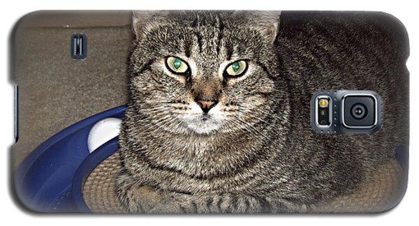 Missy 5 Galaxy S5 Case