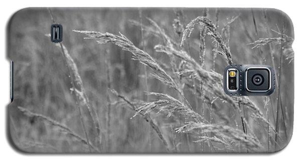 Mist Catcher Galaxy S5 Case by Tim Good