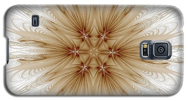 Misty Brown Mandala Galaxy S5 Case