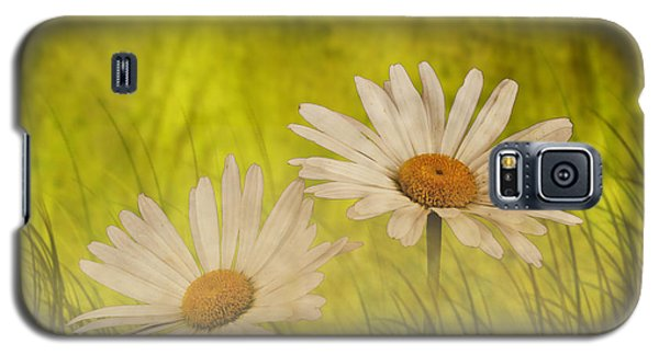 Galaxy S5 Case featuring the photograph Misty Daisies by Shirley Mangini
